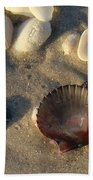 Sanibel Island Shells 5 Beach Towel
