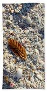 Sanibel Sea Oat Beach Towel