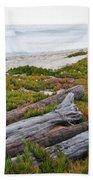 Santa Monica Mountains County Line Beach Beach Towel