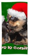 Santa Paws Is Coming To Town Christmas Greeting Beach Towel