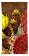 Santa Rita Cactus Beach Towel