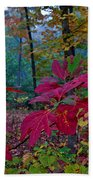 Sassafras Tea Anyone Beach Towel
