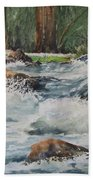 Sauble Falls Beach Towel