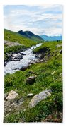 Savage River From Savage River Trail In Denali Np-ak    Beach Towel