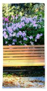 Savannah Bench Beach Towel by Carol Groenen