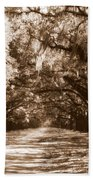 Savannah Sepia - The Old South Beach Towel