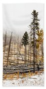 Sawback Burn, On Bow Valley Parkway Beach Towel