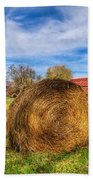 Scarecrow's Dream Beach Towel by Debra and Dave Vanderlaan
