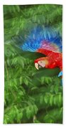 Scarlet Macaw Juvenile In Flight Beach Towel