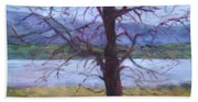 Scenic Landscape Painting Through Tree - Spring Has Sprung - Color Fields - Original Fine Art Beach Sheet
