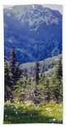 Scenic Mountain Valley Beach Towel