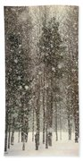 Scenic Snowfall Beach Towel