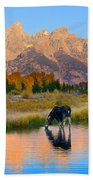 Schwabacher Morning Light  Beach Towel