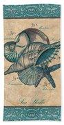 Scientific Drawing Beach Towel by Debbie DeWitt