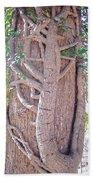 Scorpion Tree Beach Towel