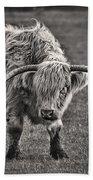 Scottish Highland Cow Beach Towel