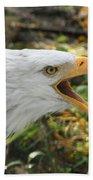 Screaming Eagle Beach Sheet