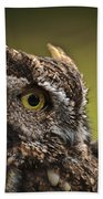 Screech Owl 1 Beach Towel