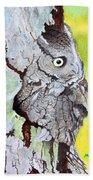 Screech Owl Beach Towel