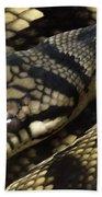 Scrub Python Abstraction Beach Towel