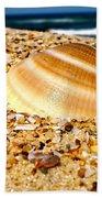 Sea Beyond The Shell Beach Towel