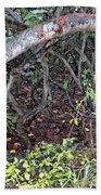 Sea Grape Jungle Beach Towel