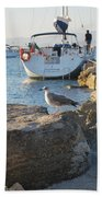 Sea Gull 1 Beach Towel