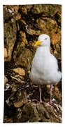 Sea Gull Beach Towel