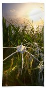 Sea Lily Beach Towel