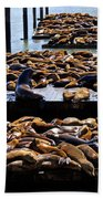 Sea Lions At Pier 39  Beach Towel by Garry Gay