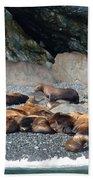 Sea Lions On The Sea Shore Beach Towel
