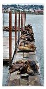 Sea Lions Sleeping Beach Towel by Robert Bales