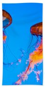 Sea Nettles Beach Towel by Anthony Sacco