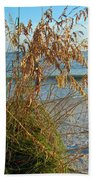 Sea Oats 1 Beach Towel