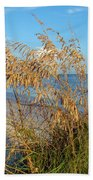 Sea Oats 2 Beach Towel