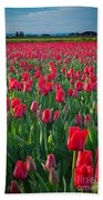 Sea Of Red Tulips Beach Towel by Inge Johnsson