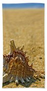 Sea Shell By The Sea Shore Beach Towel