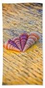 Sea Shells Beach Towel