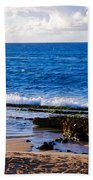 Sea Shelves Beach Towel