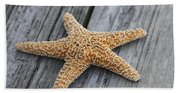 Sea Star On Deck Beach Towel