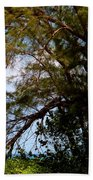 Sea Through Trees Beach Towel