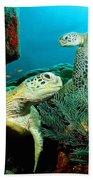 Sea Turtle Oil On Canvas Beach Towel