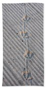 Seagull Tracks Beach Towel