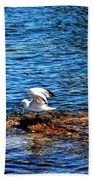 Seagull Wings Lifted Beach Towel