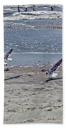 Seagulls On The Beach Beach Towel