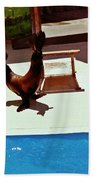 Seal And Ball Beach Towel