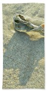 Seashell And Shadow On Sand Beach Towel