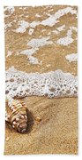 Seashells And Lace Beach Towel