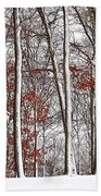 Seasons Converge Beach Towel