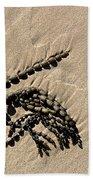 Seaweed On Beach Beach Towel